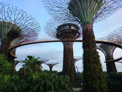 Langzeiturlaub Singapur, Singapur, Central