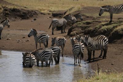 Kurztrip Kenia » Landesinnere
