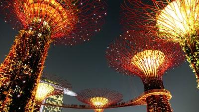 Kurzurlaub Singapur, Singapur, Die sogenannten Supertrees sind pflanzenbewachsene Stahlgerüste, die