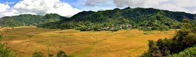 Kurzurlaub Flores, Indonesien, Spider Rice Felder