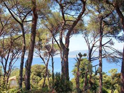 10 Tage Korsika, Frankreich, Ajaccio ist die Hauptstadt Korsikas. Außerdem wurde 1769 Napoleon Bon