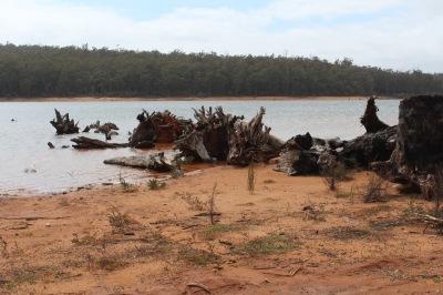 Langzeiturlaub Australien, Australien, Serpentine Dam