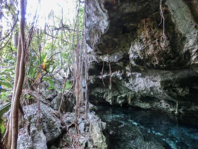 Zwei Wochen Riviera Maya & Insel Cozumel, Mexiko, Die Cenote finde ich schon von außen beeindruckend!