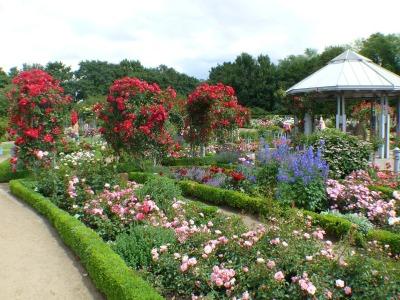 Kurzurlaub Hamburg, Deutschland, Der botanische Garten ist ein beliebtes  Ausflugsziel für jung und al