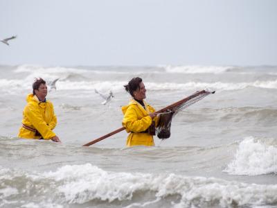Eine Woche Belgien, Belgien, Während die Männer auf Pferden durchs Wasser reiten müssen die Fisc