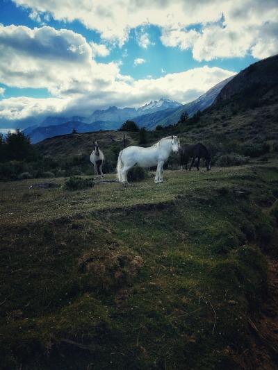 2 Wochen Patagonien, Chile, Cerro Castillo Nationalpark