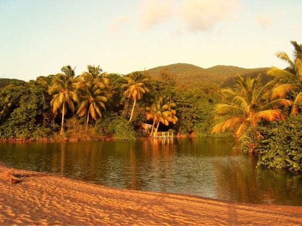2 Wochen Karibische Inseln, alle Länder, Auf einem Ausflug nach Les Saintes kannst du mit etwas Glück Delfine