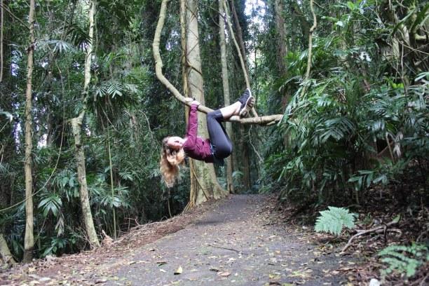 Langzeiturlaub Australien, Australien, Dorrigo National Park