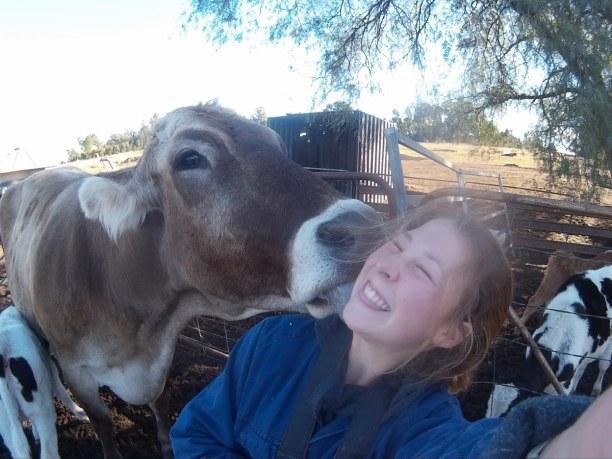 Langzeiturlaub Australien, Australien, Arbeiten auf der Farm