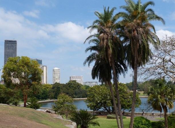 1 Woche New South Wales, Australien, Der Royal Botanic Garden ist der Größte der drei botanischen Gärten