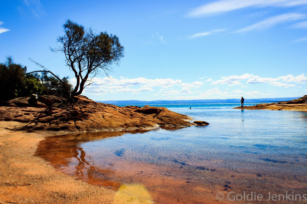 2 Wochen Victoria, Australien, Honeymoon Bay, Coles Bay - Tasmanien