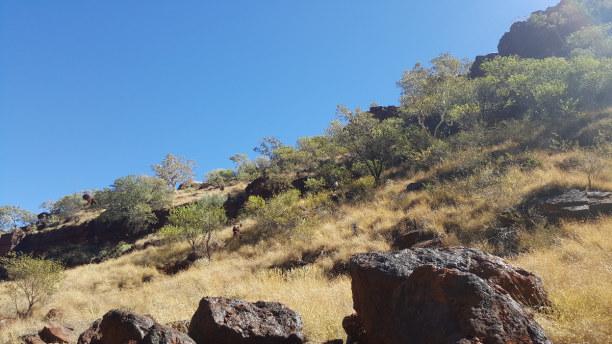 Kurztrip Australien » Western Australia