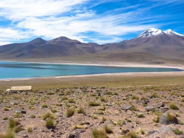 Langzeiturlaub Atacama Wüste, Chile, Laguna Miscanti auf 4500 Meter Höhe
