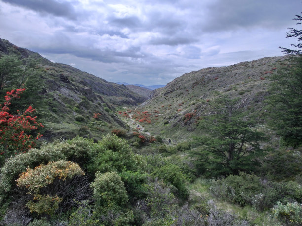 Kurzurlaub Patagonien, Chile, Der letzte Wandertag bricht an. Wir wandern durch patagonische Landsch