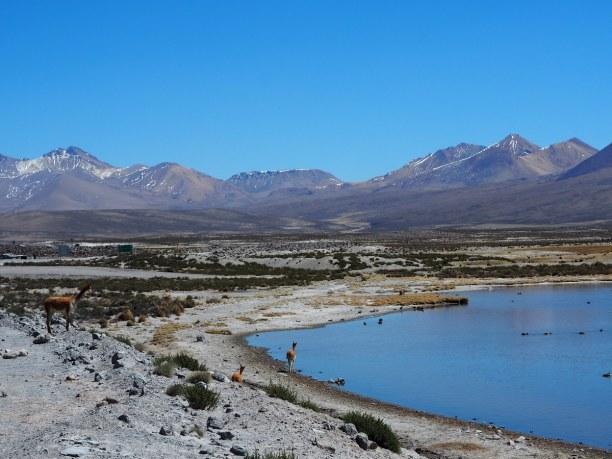 Langzeiturlaub Santiago de Chile & Umgebung, Chile, Traumhafte Kulissen