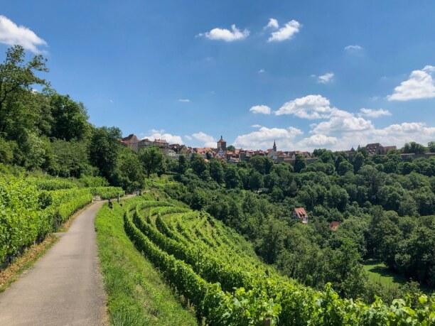 Langzeiturlaub Bayern, Deutschland, Weinreben soweit das Augen reicht!