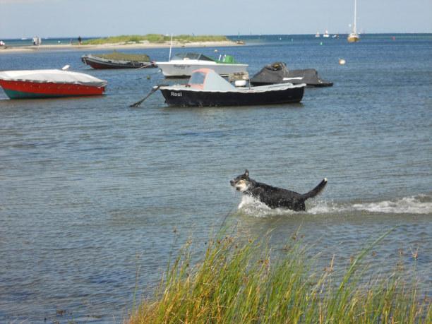 Kurztrip Deutschland » Ostseeküste