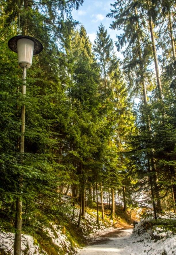 Kurztrip Deutschland » Schwarzwald