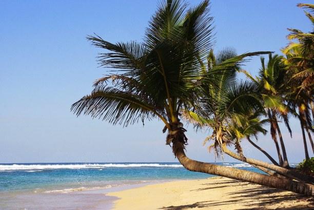 10 Tage Dominikanische Republik, Dominikanische Republik, Punta Cana