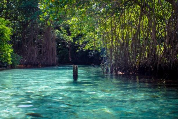 Langzeiturlaub Halbinsel Samana, Dominikanische Republik, Playa Rincón