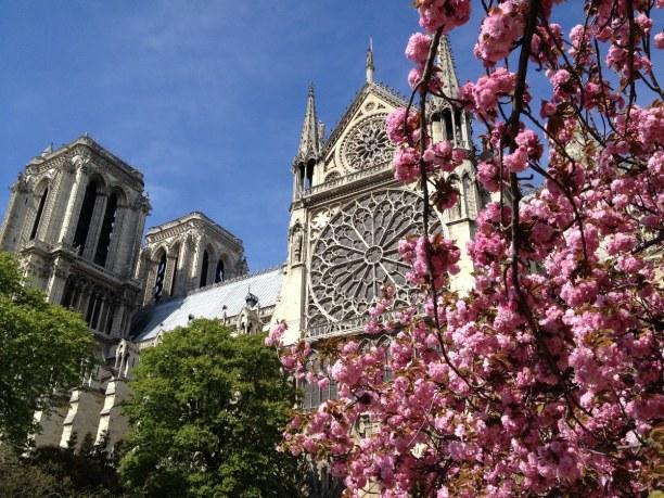 Kurzurlaub Ile de France, Frankreich, Cathédrale Notre-Dame de Paris