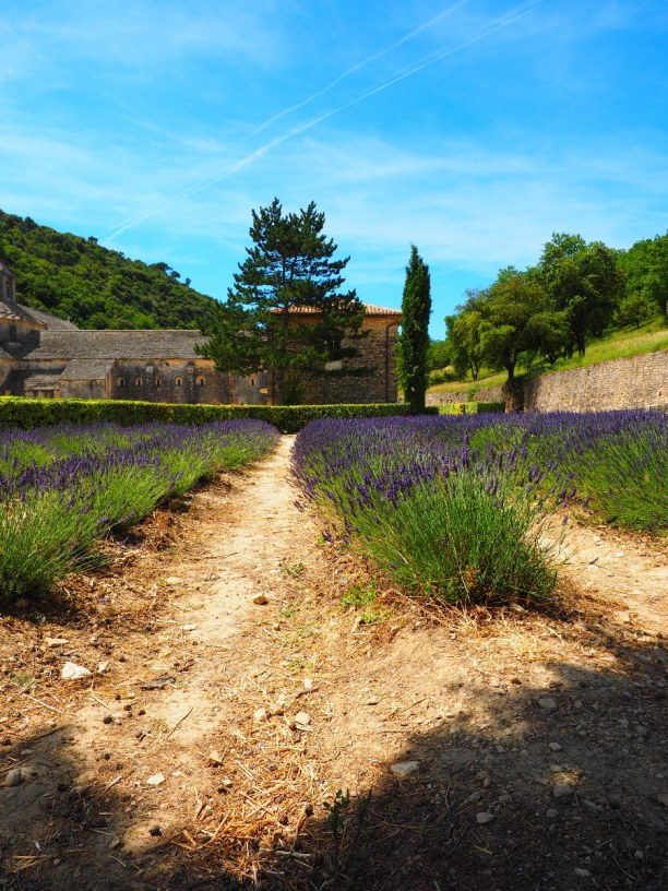 1 Woche Provence, Frankreich, Von Gordes aus kannst du den 1,5 km langen Weg zum Kloster laufen und