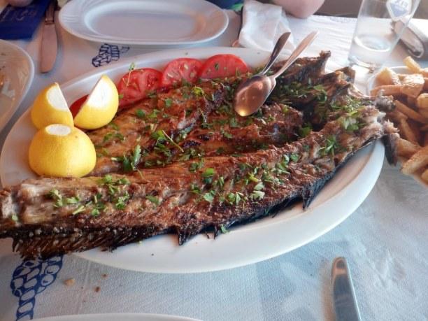 1 Woche Griechenland » Chalkidiki
