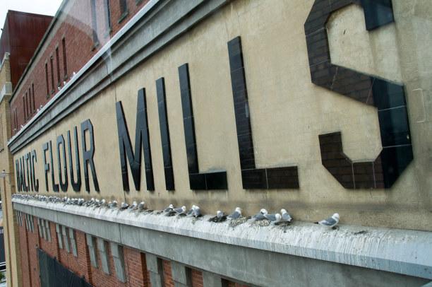 Kurzurlaub Mittel & Nord-England, Großbritannien, Einige der ehemaligen Industriegebäude wurden für andere Zwecke umge