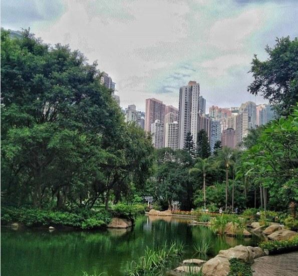 Kurztrip Hongkong, Hongkong, Der Hongkong Park ist eine grüne Idylle inmitten der geschäftigen Me