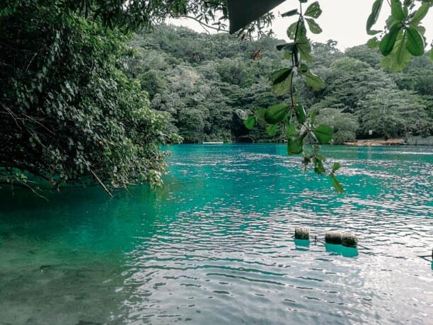 10 Tage Jamaika, Jamaika, Die blaue Lagune auf Jamaika wird von unterschiedlichen Süßwasserque