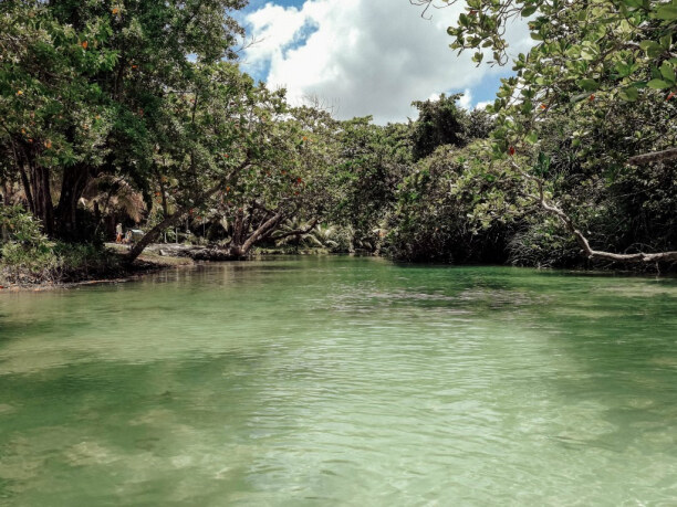 10 Tage Jamaika, Jamaika, Der Süßwasserfluss bei Frenchmans Cove ist der perfekte Ort zum Bade