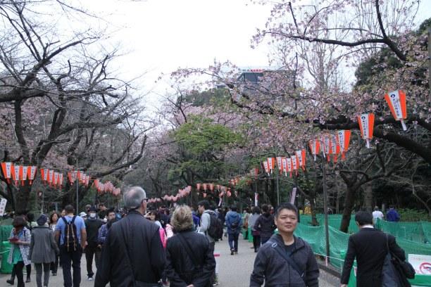 2 Wochen Honshu, Japan, Ueno Park