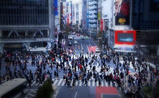 Zwei Wochen Honshu, Japan, Shibuya
