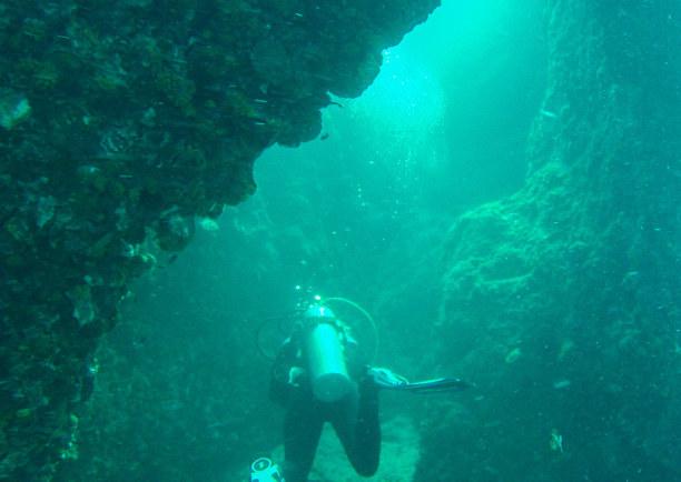10 Tage Ko Phangan (Stadt), Koh Samui und Umgebung, Thailand, Wir tauchen bis in 28 Meter Tiefe. Hier hat das Wasser noch immer 28 G