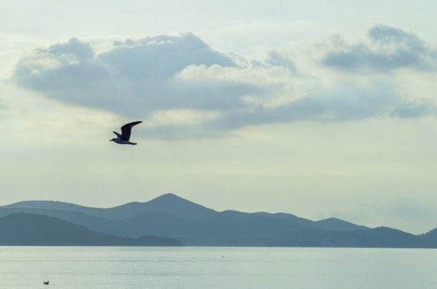 Eine Woche Adriatische Küste, Kroatien, In Bibinje könnt ihr auch Wandern, Tauchen, Schnorcheln, Radfahren un