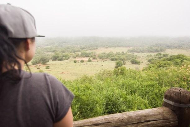 Kurzurlaub Soutpansberg (Stadt), Landesinnere, Südafrika, Unser Ausblick vom Dorf auf das Wasserloch und die Tiere, die sich run