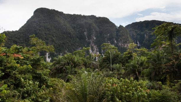 Kurztrip Kelantan, Malaysia, Mich fasziniert die Karstlandschaft in dieser Gegend.