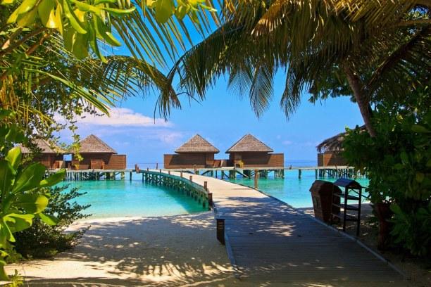 Zwei Wochen Ari Atoll, Malediven, Oftmals ist dein Zimmer in einem Bungalow, welches durch Stege mit den