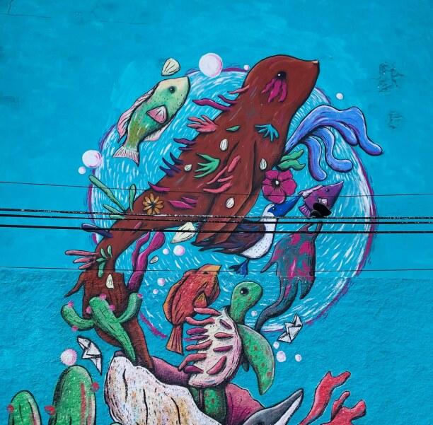 Kurztrip Baja California & Golf von Kalifornien, Mexiko, Eigentlich bin ich ja nur wegen der Walhaie nach La Paz gekommen. Hät