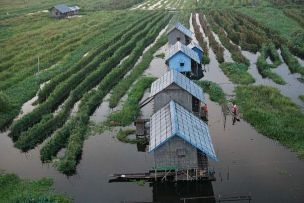 Langzeiturlaub Myanmar, Myanmar, Blick auf die schwimmenden Gärten beim Ballonflug über den Inle See