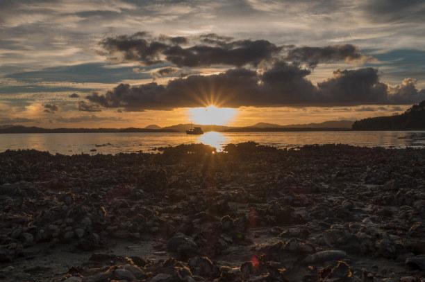 Eine Woche Nordinsel, Neuseeland, Das ist Neuseeland: Den Sonnenuntergang mit einem Bierchen in der Hand