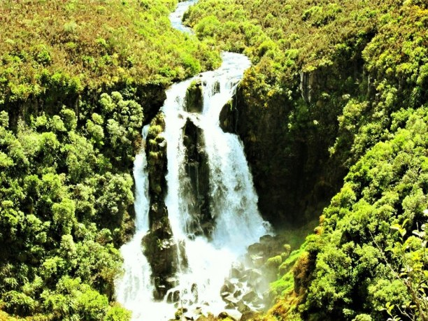 Langzeiturlaub Neuseeland » Südinsel