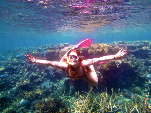 Langzeiturlaub Südinsel, Neuseeland, Great Barrier Reef