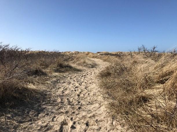 10 Tage Nordseeinseln » Borkum