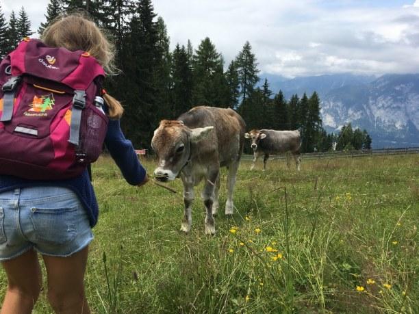 10 Tage Natters (Stadt), Nordtirol, Österreich, Mutters