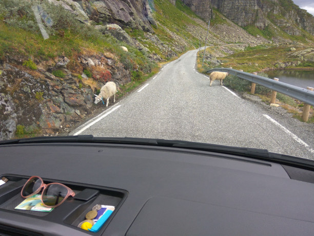 Zwei Wochen Norwegen » Südland