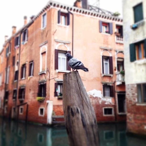 Kurzurlaub Nago-Torbole (Stadt), Oberitalienische Seen & Gardasee, Italien, Venedig