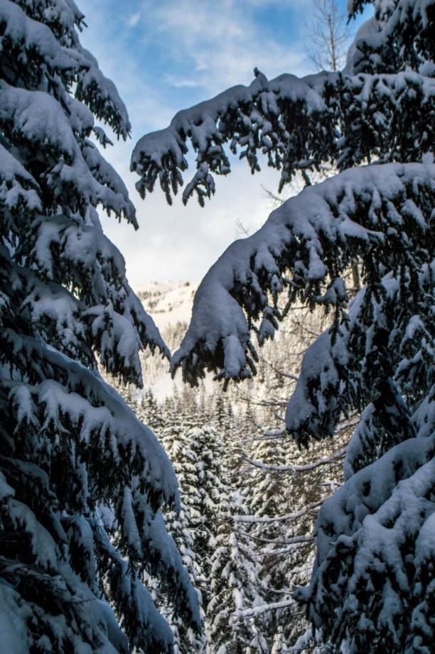 Kurzurlaub Kärnten, Österreich, Katschberghöhe