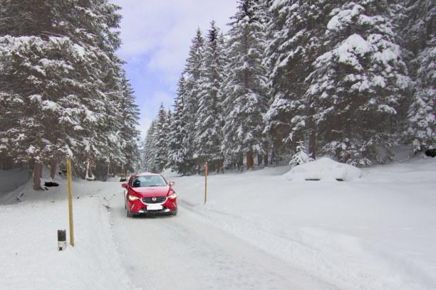 Kurzurlaub Nordtirol, Österreich, Ab geht's durch die verschneite Landschaft! So muss eine Winterlandsch