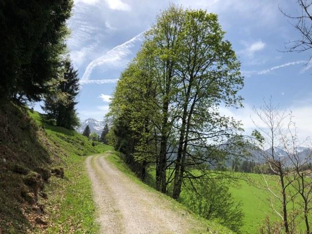 Kurztrip Nordtirol, Österreich, Noch eine wunderbare Wanderung im Tiroler Land ist der Warminger Höhe